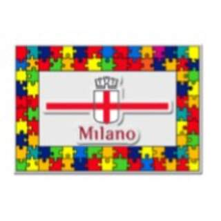Magnet Plexiglass Puzzle 3D shield
